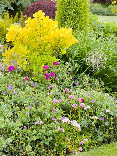 design flower bed shade tips for successful flower garden design