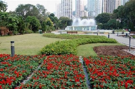 Garden Hong Kong by Terrace Garden Picture Of Hong Kong Zoological