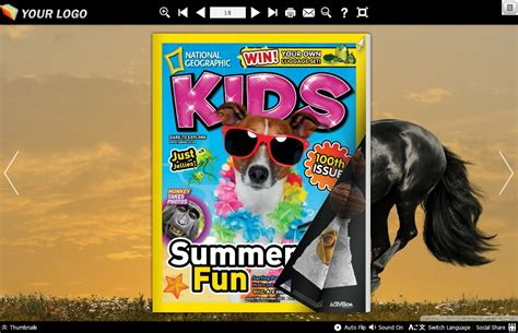 book themes pdf horse theme for boxoft pdf to flipbook pro the horse