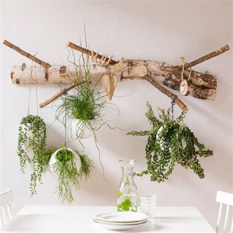 hang planten bloemen buiten 25 beste idee 235 n over hangplanten op pinterest