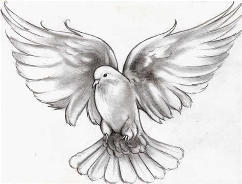 Dove Designs 71 Beautiful Dove Tattoos With Meanings