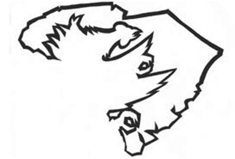 south carolina gamecocks coloring pages coloring pages