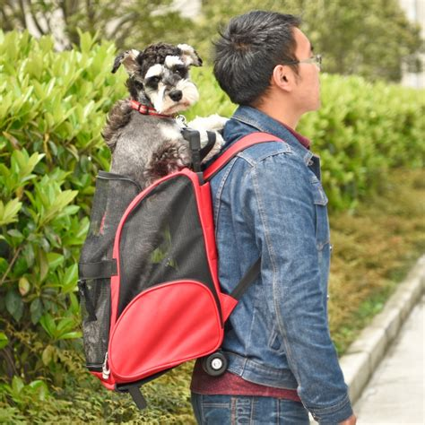 Vacation Pet Pet Pet Product 2 by Aliexpress Buy Pet Multipurpose Trolley Bag Pet Dogs