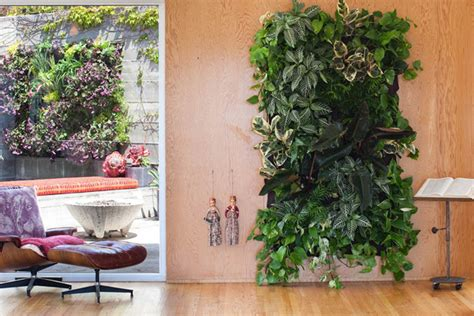 Indoor Wall Garden by Five Easy Steps For Creating An Indoor Outdoor Vertical