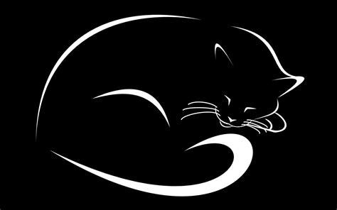 imagenes en blanco y negro gatitos fondos de pantalla ilustraci 243 n gato monocromo logo