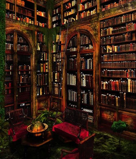 big beautiful libraries  library pictures snappy pixels