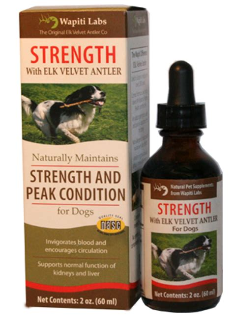best multivitamin for dogs the best vitamins for your s health wapiti labs inc
