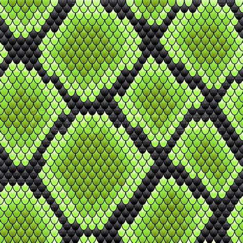 design pattern viper green seamless pattern of reptile stock vector colourbox
