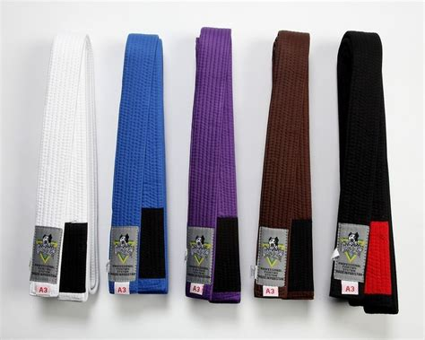 jiu jitsu belt colors gameness jiu jitsu belt all colors ebay