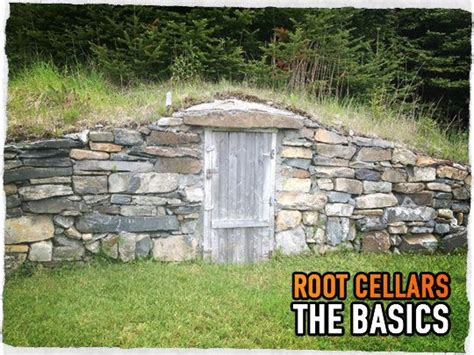 match in the root cellar how you can spark a peak performance culture books 126 best images about root cellar on farmers