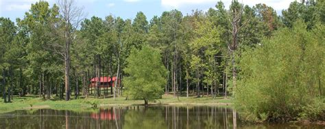 Degray Lake Cottages by Creek Cabin Lake Degray Cabins Remember When