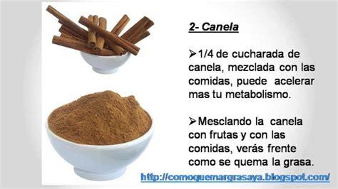 alimentos queman grasa abdominal alimentos que queman grasa rapidamente 5 alimentos que