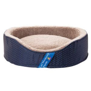 petsmart beds top paw gel memory foam lounger pet bed at petsmart great
