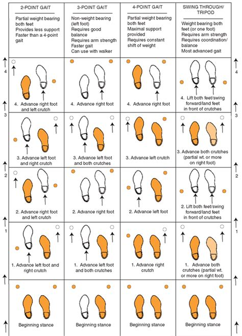 gait pattern types two point gait pattern search results dunia pictures