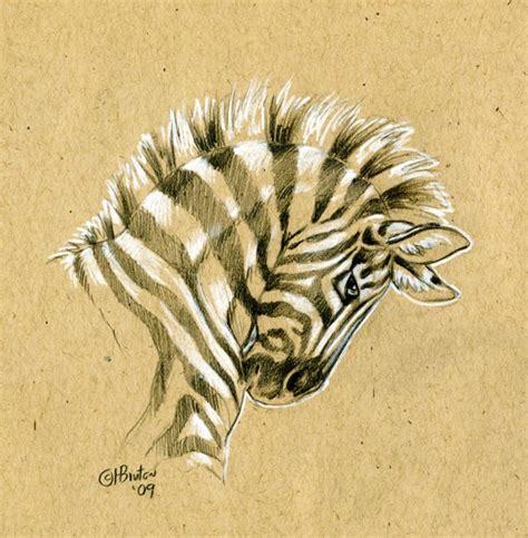 sketchbook with brown paper brown paper zebra sketch by hbruton on deviantart