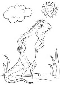 marine iguana coloring page 88 galapagos marine iguana coloring page charming