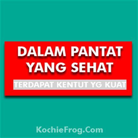 dp bbm lucu gokil abis 2017 kochie frog