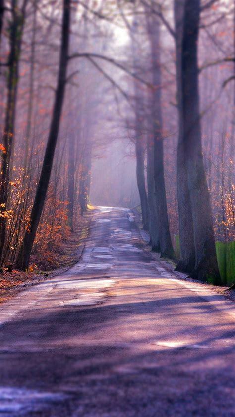 winter autumn road iphone wallpaper iphone wallpapers
