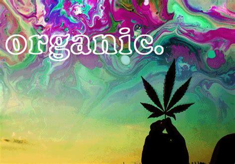 imagenes gif weed fotos dibujos y gifs marihuana parte 1 im 225 genes taringa