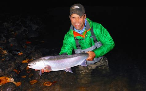 steelhead flies for swinging swinging great lakes steelhead and beyond toflyfish