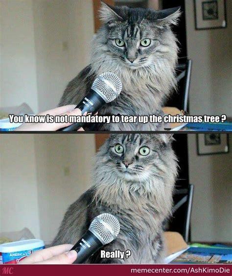 Cat Christmas Memes - cat vs christmas tree by ashkimodie meme center