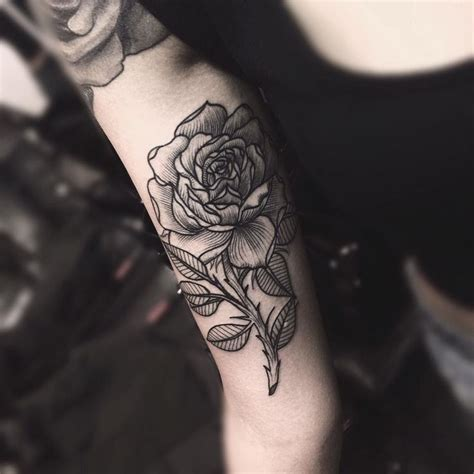 black rose tattoo studio 53 best images about sketch draw and by edwin basha