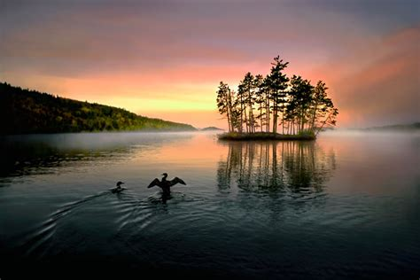national loons lights natur pur jim brandenburg photoscala