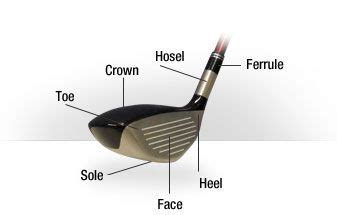anatomy of a golf swing parts of the hybrid golf club anatomy class pinterest