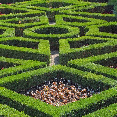 Kitchen Floating Island 48 Quot Mind Boggling Quot Hedge Maze Amp Garden Labyrinth Designs