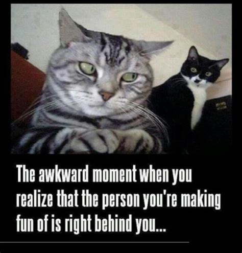 That Awkward Moment Meme - awkward moment memes 9 dump a day