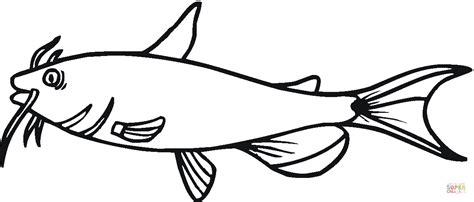 catfish coloring page catfish 1 coloring page free printable coloring pages