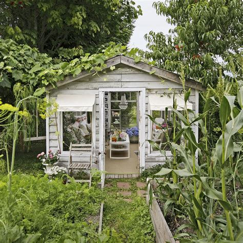 shed trend       shed