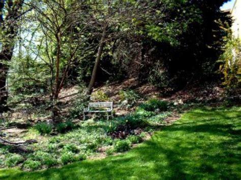 backyard wildlife habitat your backyard wildlife habitat begin in to fleas chartiers valley pa patch
