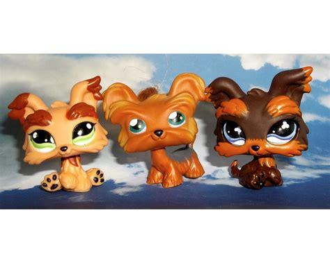 shoo for shih tzu 3 littlest pet shop shih tzu yorkie puppy lot lps 6 1016 509