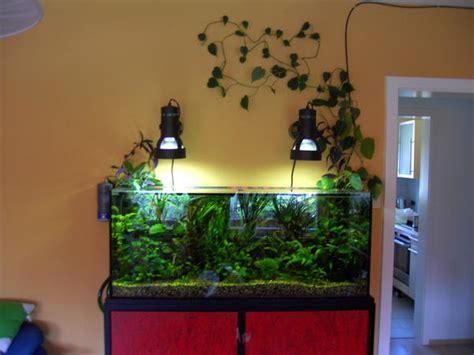 gestell aquarium aquarium untergestell kleinanzeigen tiermarkt deine