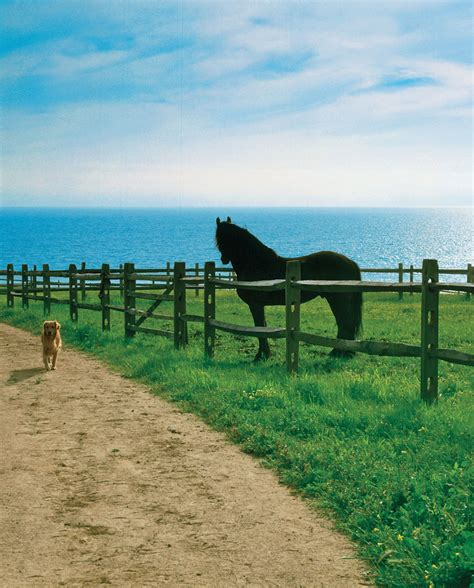 malibu ranch oceanside ranch malibu california leading estates of