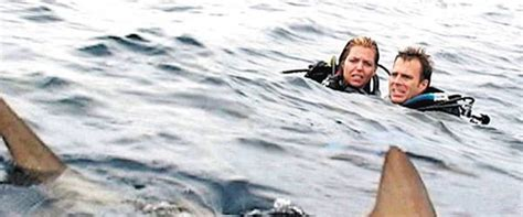 Open Water open water review summary 2004 roger ebert