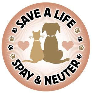 average cost of neutering a spay neuter p a w s