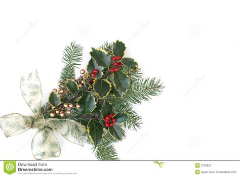 christmas decorations with berries decoration with berries stock photo image 3709920