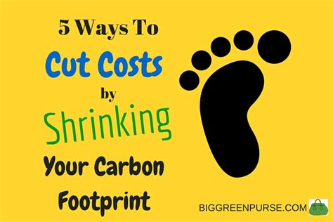 7 Ways To Cut Your Carbon Emissions by 5 Smart Ways To Cut Business Costs By Shrinking Your