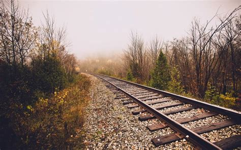 railroad fog trees wallpaper travel  world
