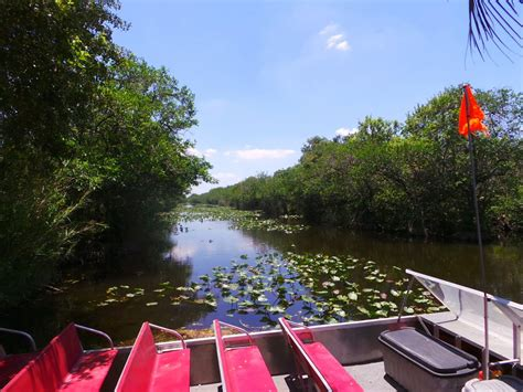 airboat tours ta road trip cruising the tamiami trail from east to west
