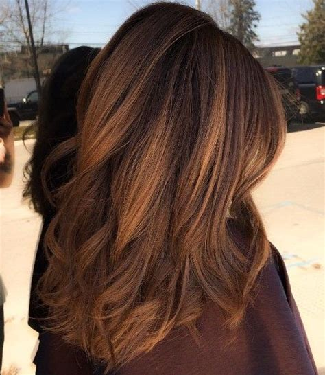 pictures of chestnut brown hair color with highlights and lowlights on african american hair best 25 chestnut brown hair ideas on pinterest bayalage