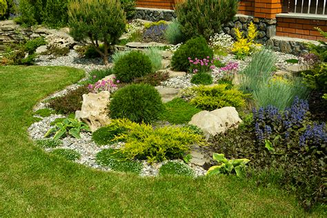 planting plants in your sacramento landscape design