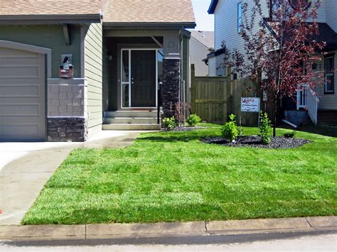 feel free landscaping ideas for front yard on a hill