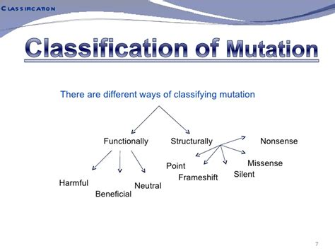 what are neutral mutations what are neutral mutations 28 images mutations ocr