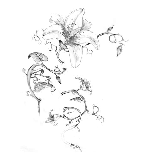 august flower tattoo flower sketch drawing sketch galery