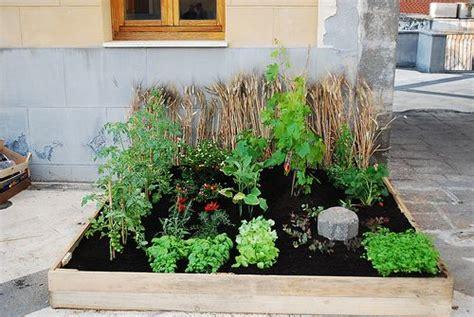 piccolo orto in giardino quella irresistibile voglia di orto in casa idee green