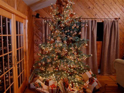 trim a home tree photo album best