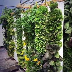 Vertical Garden Planters Uk - 20 beautiful diy vertical herb garden ideas 2015